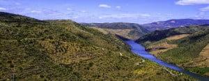 Le Douro à Foz Coa