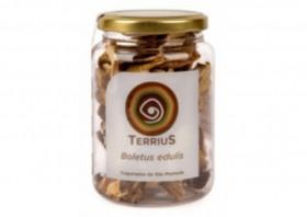 cèpes séchés Extra Terrius