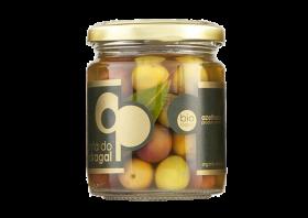 Olives bio Cobrançosa Quinta Pedragal