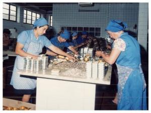 Travail - Comur - Conserves de sardines du Portugal